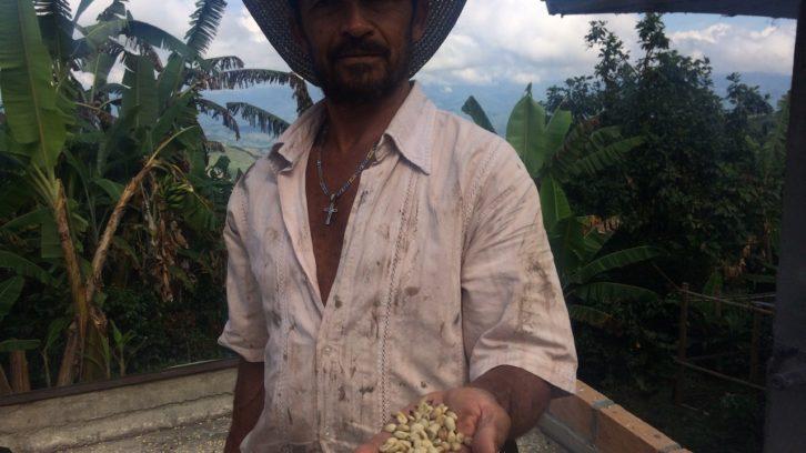 Kaffeeland Kolumbien